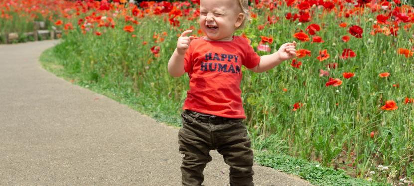 Teoría de la felicidad,simplificada.